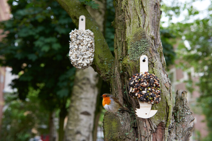 Desserts for Birds Single