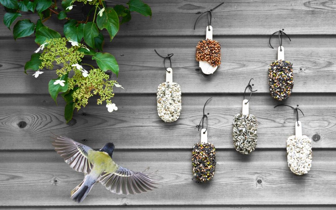 Desserts for Birds Set